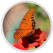 Zinnia With Butterfly 2669 Round Beach Towel
