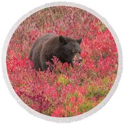 Berries For The Bear Round Beach Towel