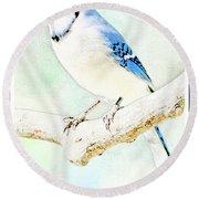 Blue Jay Round Beach Towel