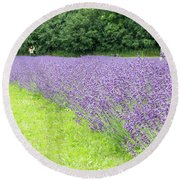 Blue Lavender Round Beach Towel