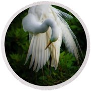 Breeding Plumage And Color Round Beach Towel