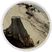 Broken Tree Round Beach Towel