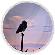 Burrowing Owl On A Stick Round Beach Towel