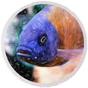 Colored Pencil Red Fin Borleyi Cichlid Round Beach Towel