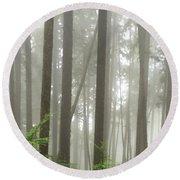 Foggy Forest Round Beach Towel