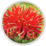 Glorious Sho-n-tell Dahlia Round Beach Towel