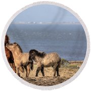 Icelandic Horses Round Beach Towel