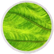 Leaf Design Round Beach Towel