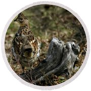 Round Beach Towel featuring the photograph Ruffed Grouse 50701 by Rick Veldman