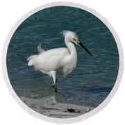 Snowy Egret Round Beach Towel