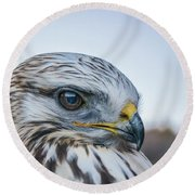 Round Beach Towel featuring the photograph B2 by Joshua Able's Wildlife