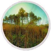 Round Beach Towel featuring the photograph Which Way To Go  by Tom Jelen
