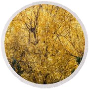 Round Beach Towel featuring the photograph Autumnal Park. Autumn Trees And Leaves. Fall by Alex Grichenko
