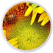 Round Beach Towel featuring the photograph Peek-a-boo by Candice Trimble