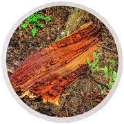 Round Beach Towel featuring the photograph Wet Wood by Jon Burch Photography