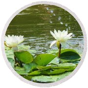 2 White Water Lilies Round Beach Towel