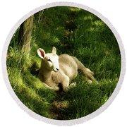 20/06/14  Keswick. Lamb In The Woods. Round Beach Towel