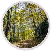 Round Beach Towel featuring the photograph Scenic Views Along Virginia Creeper Trail by Alex Grichenko