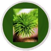 Green Spines Round Beach Towel