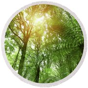 Canopy Of Jungle Round Beach Towel