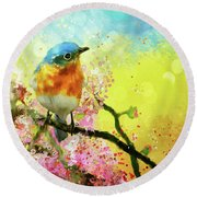 A Bluebird On The Redbud Round Beach Towel