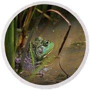 A Frog Waits Round Beach Towel