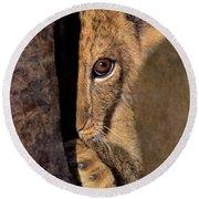 A Lion Cub Plays Hide And Seek Wildlife Rescue Round Beach Towel