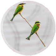 Round Beach Towel featuring the photograph A Little Bee Eater Couple by Kay Brewer