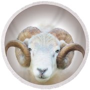 A Little Ram  Round Beach Towel