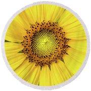A Perfect Sunflower Round Beach Towel