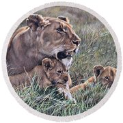 Round Beach Towel featuring the painting A Quiet Moment Lioness And Lion Cubs by Alan M Hunt