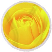 A Yellow Rose For Joy And Happiness Round Beach Towel