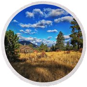 Round Beach Towel featuring the photograph Abandoned Cabin by Dan Miller