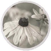 Round Beach Towel featuring the photograph Achromatic Adoration by Dale Kincaid