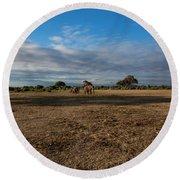 Amboseli Round Beach Towel