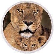 African Lions Parenthood Wildlife Rescue Round Beach Towel