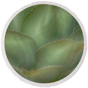 Agave Softened Round Beach Towel