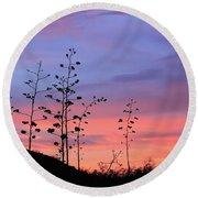 Round Beach Towel featuring the photograph Agave Sunset 1 by Dawn Richards