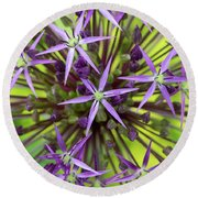 Allium Christophii Pattern Round Beach Towel