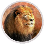 Alpha Male Lion Round Beach Towel