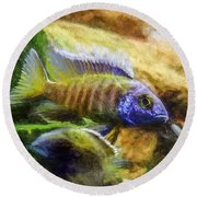 Amazing Peacock Cichlid Round Beach Towel