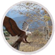 American Eagle In Autumn Round Beach Towel