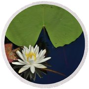 American Water Lily Round Beach Towel