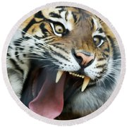 An Angry Tiger Roars Fiercely Round Beach Towel