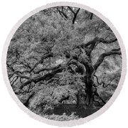 Round Beach Towel featuring the photograph Angel Oak Tree Black And White by Rick Berk