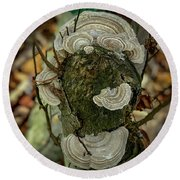 Another Fungus Round Beach Towel