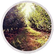 Round Beach Towel featuring the photograph Apple Orchard by Candice Trimble