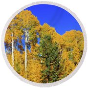 Arizona Aspens And Blowing Leaves Round Beach Towel