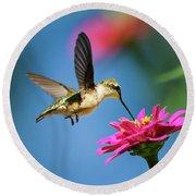 Art Of Hummingbird Flight Round Beach Towel