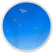 Group Of Seagulls On Blue Sky In The Argentine Patagonia Round Beach Towel